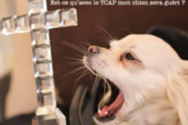 Hallelujah ! Est-ce qu'avec le TCAP mon chien sera guéri ?